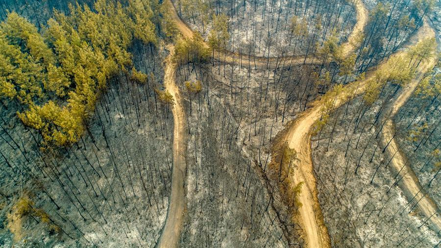 Enquête en cours, les équipes recherchent la trace d'un incendie criminel dans les incendies dans le sud de la Turquie