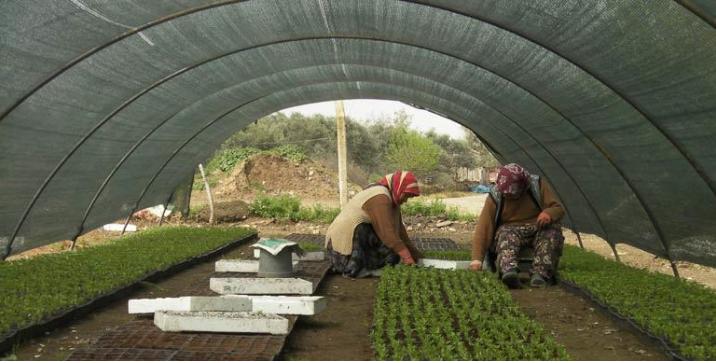 Erdoğan se tourne vers les coopératives agricoles pour lutter contre la hausse des prix