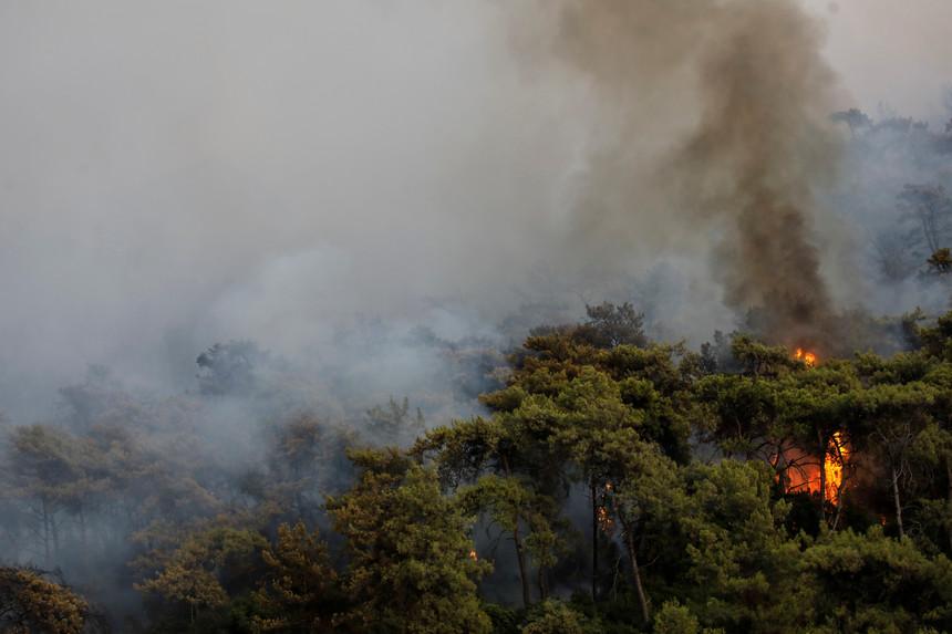 L'Union européenne offre son aide à la Turquie pour lutter contre les incendies
