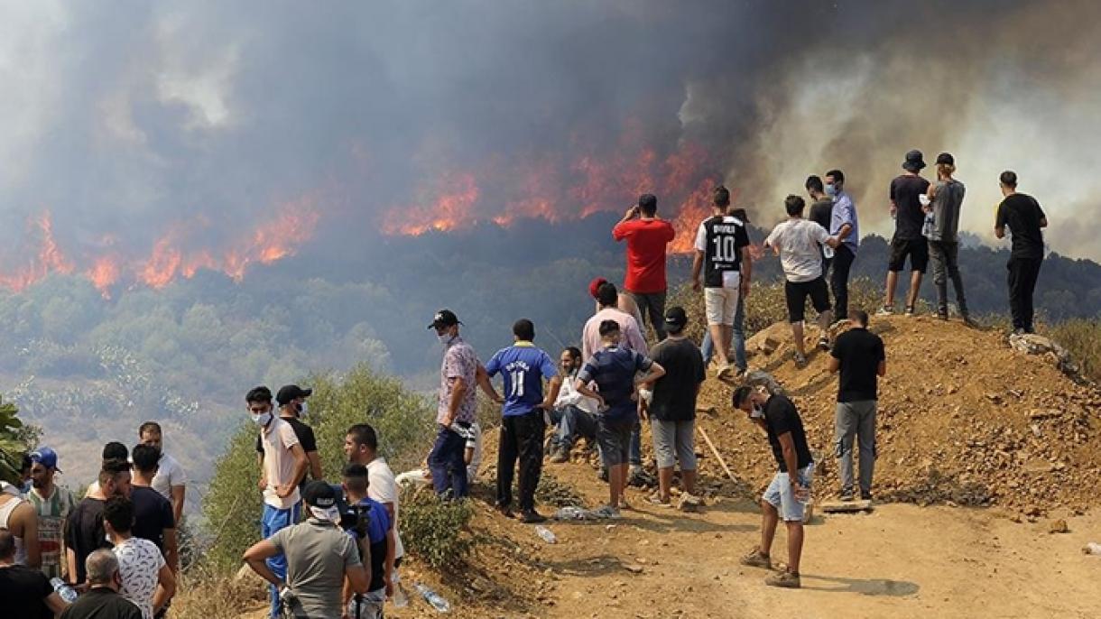 Algérie : Le bilan des victimes des feux de forêt s'alourdit à 69 morts
