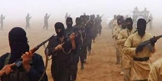 Turquie : 11 combattants terroristes étrangers de nationalité française, expulsés