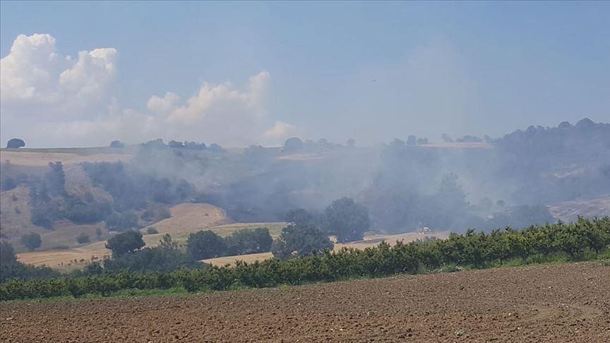 Un incendie de forêt frappe le nord-ouest de la Turquie