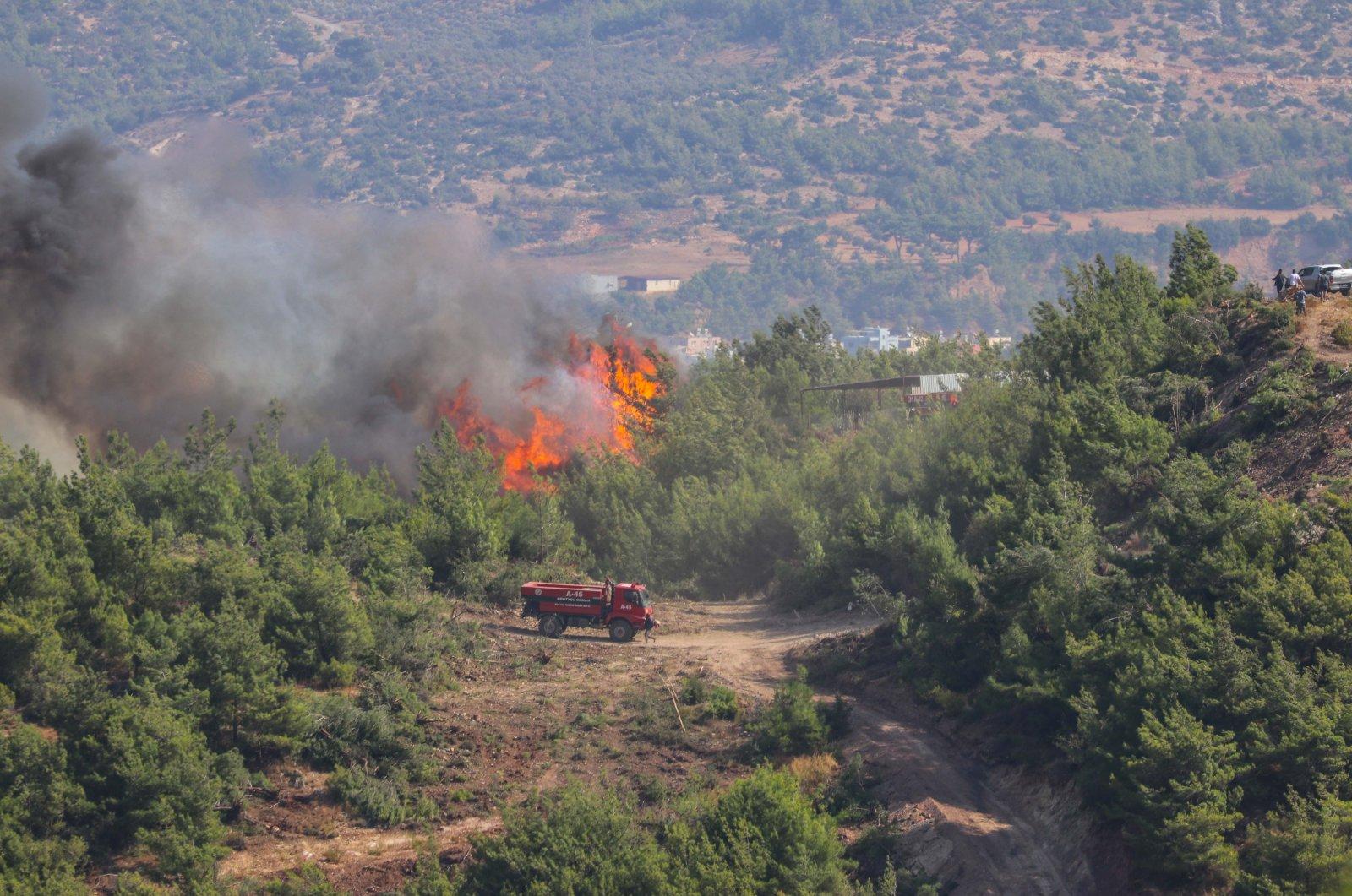 Un incendie de forêt à Hatay en Turquie est totalement sous contrôle