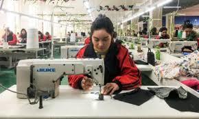 Ouïghours : dans le prêt-à-porter, du coton made in « travail forcé »