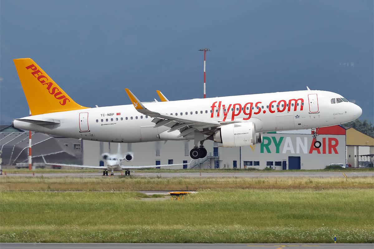 Le trafic passagers de la compagnie turque Pegasus Airlines de janvier à novembre en baisse de 51%