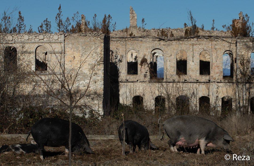 #KarabakhCulturalGenocide
