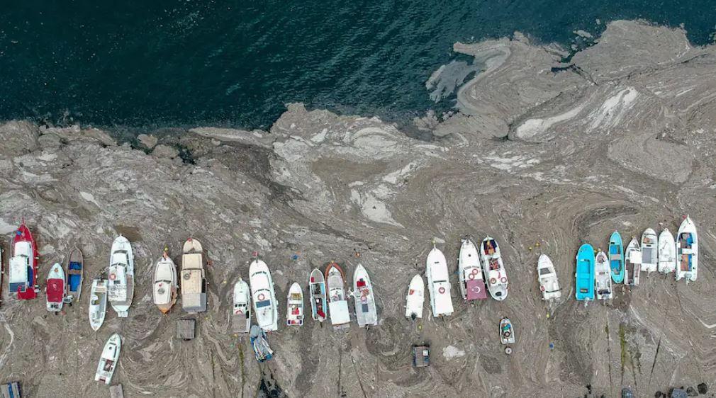 La Turquie lance un effort massif pour aspirer une épaisse couche de « morve de mer » étouffant sa côte