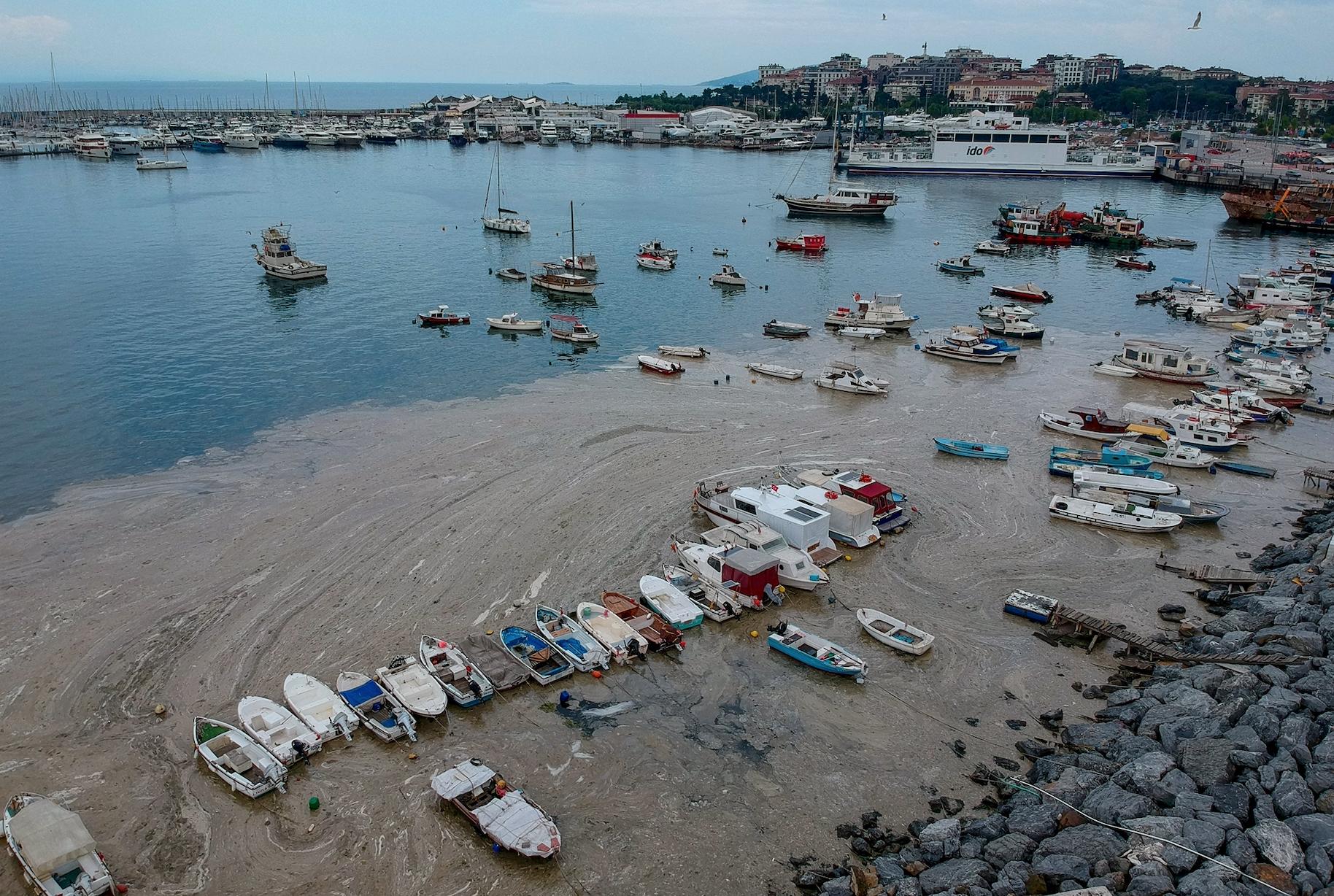 La Turquie renforce les contrôles contre les entreprises de décharge de déchets pour résoudre le problème du mucilage de la mer